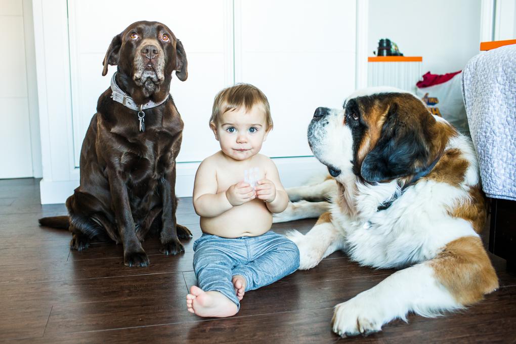 Portafolio de fotografía de bebé fotos-de-bebe-0012-Ana-Cruz
