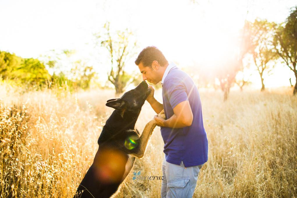 Portfolio de mascotas NA_9644