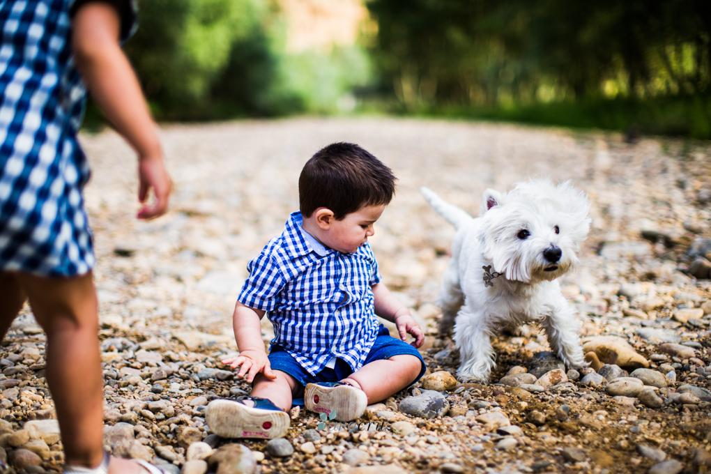 Portfolio de mascotas NA_9909