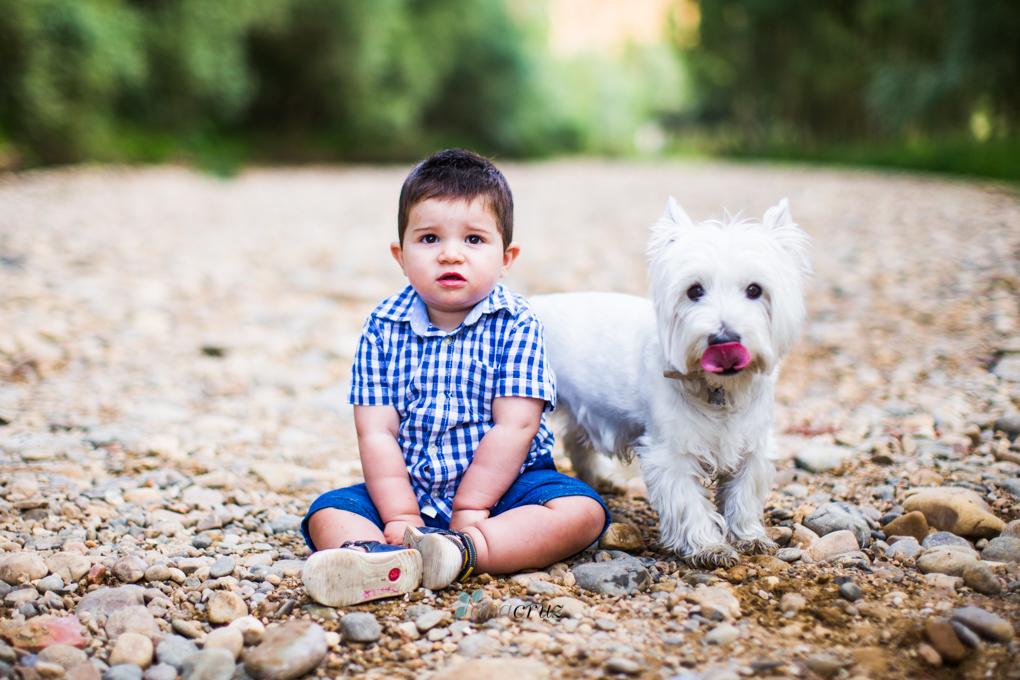 Portfolio de mascotas NA_9915