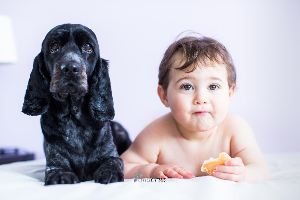 Portfolio de mascotas www.anacruz.es205