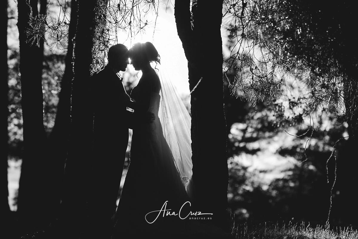 Fotografía de bodas :: Información para los novios anacruz_boda087-1